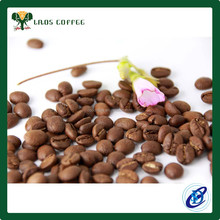 Organic fertilizer arabica coffee bean roasted coffee bean