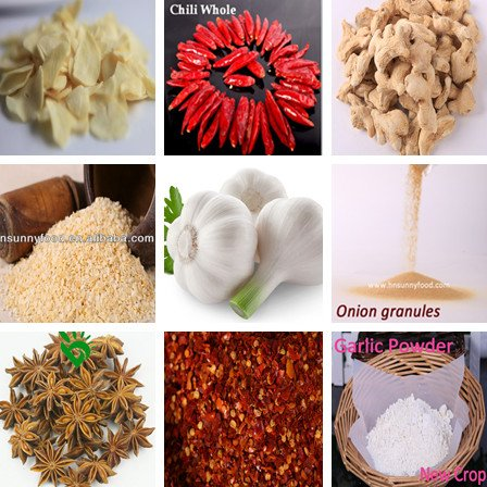 Spice Supplier From China
