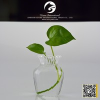 different shape cheap glass vases