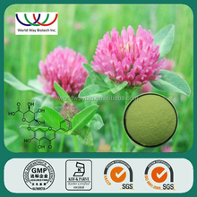 Hot Sale 100% Natural Plants Estrogen Red Clover Trifolium Pratense L. Extract with 40% Isoflavones