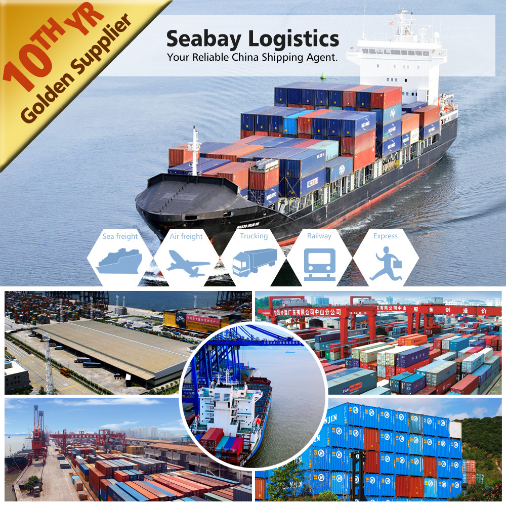 ocean/sea freight forwarding services from China to Canada/USA
