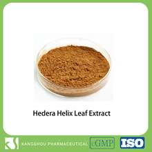 High Qualtiy Hederagenin Ivy Extract /Hedera helix extract Hederacoside C10%