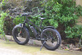 Electric bike big power electric bicycle with big tire
