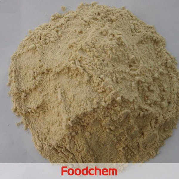 China Food Grade Vital Wheat Gluten