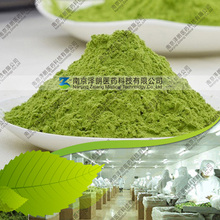 Free Sample 80 ~ 200 mesh HALAL Certified Dehydrated Barley Grass Powder