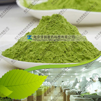 Wholesaler Barley Grass Powder