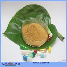 extract of ginkgo biloba leaf food grade