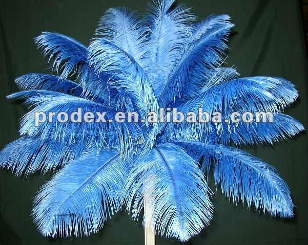 Dyed Ostrich Wing Plumes used for tower vase centerpiece