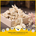 Professional manufacture for air dried garlic and ginger of high quality