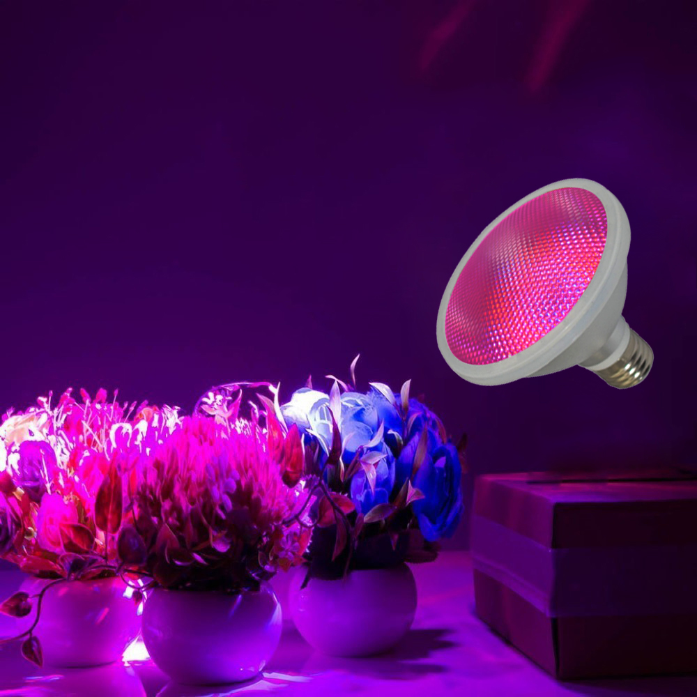 Best price shenzhen wholesale high quality red and blue gorw led light