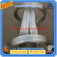 Supply 0.25mm-6.0mm high quility hot-dipped galvanized iron wire 2015 hot sale galvanized wire/galvanized iron wire/galvanized