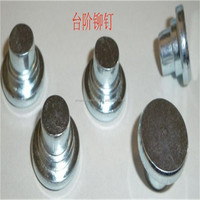 China made Stainless steel Flat head shoulder step rivet