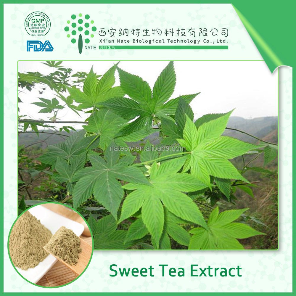 100% pure best quality Sweet tea leaf extract /Sweet tea powder /Rubusoside 80% in reasonable price