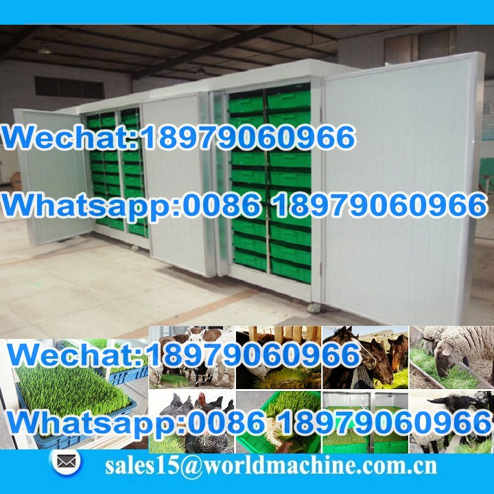 hydroponics equipment/hydroponics barley wheat Alfalfa grow machine system