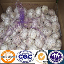 2014 white garlic plantation best price