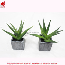 Chinese factory Artificial mini aloe plant fake mini succulent potted