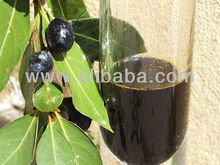 LAUREL BERRY OIL 100 % PURE & NATURAL LAUREL SEED OIL