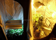 mini greenhouse indoor hydroponic grow systems complete grow tent 240x240x200