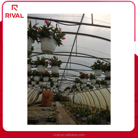 Factory price Transparent Plastic Film For Green House