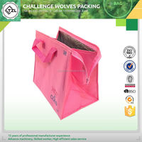 Good quality wholesale insulated bag for carrying cans and food