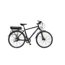 "best mens electric fat 20""bikes"
