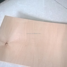 High quality 1.6MM thick maple sheet wood for first skateboard/gas powered longboard