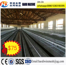Automatic Poultry Farm Chicken Layer Cage