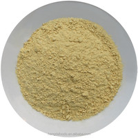 Competitive Price 100Mesh Dried Ginger Powder, the Benefits of Ginger Powder