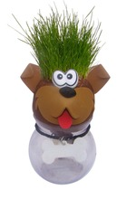 Best Selling Funny Novelty Grass Pet Dog <strong>Toys</strong> In Yiwu <strong>Toy</strong> Market