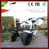Two Wheels Chinese Cheap Electric Bike Kit