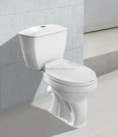 Hot Sale Ceramic Sanitary Ware P-trap Washdown Toilet HTT-8009 for Central Asia