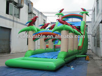 inflatable water slide for adult and kids ; inflatable bird water slide