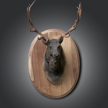 European style brown animal resin antelope and elk head wall hanging for home decoration