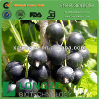 Black currant seed extract powder