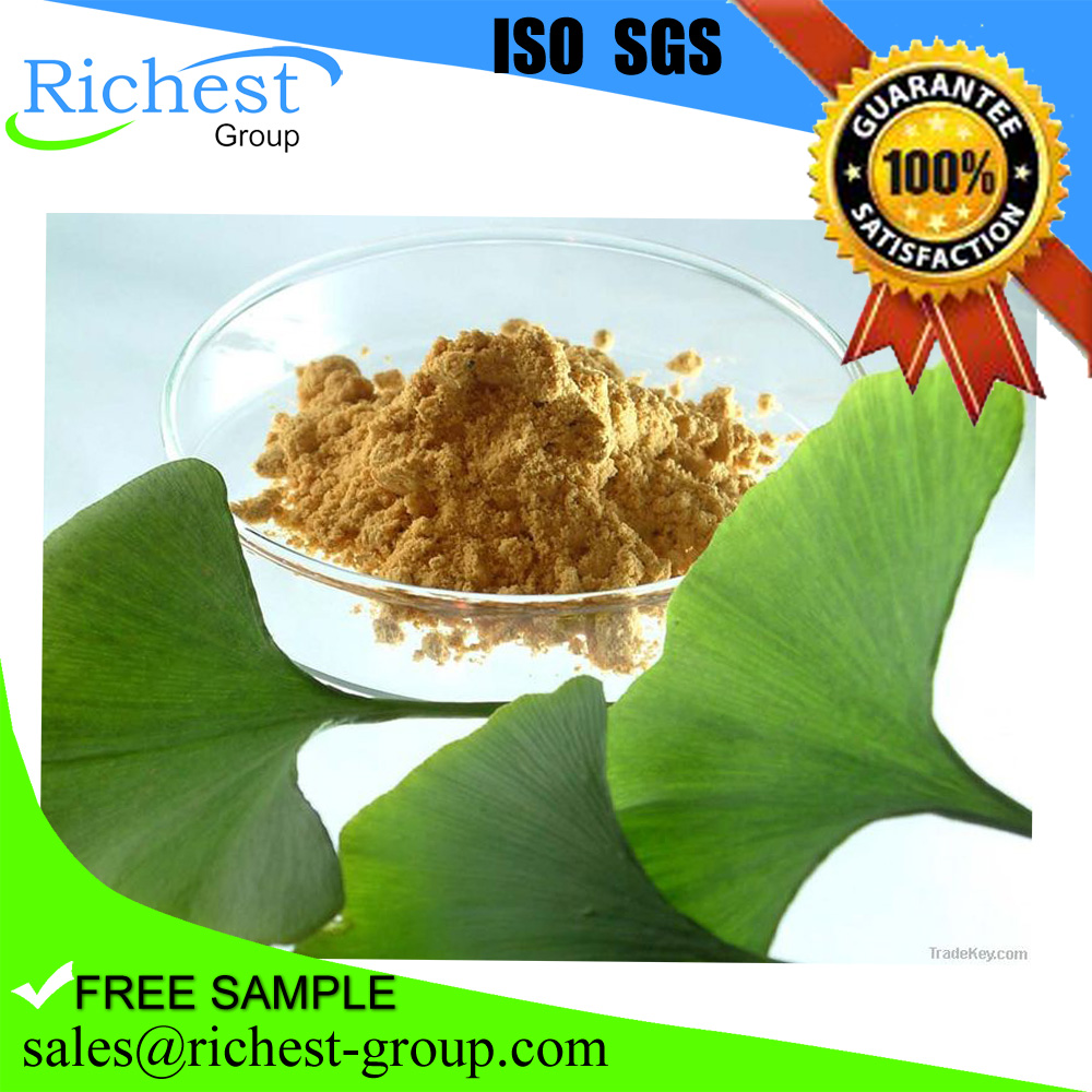 GMP factory supply Hot sale 100% pure and natural ginkgo biloba extract