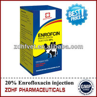 Cow Medicine Enrofloxacin injection 10% for cattle sheep