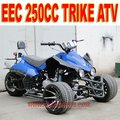 EEC 250cc 3 Wheel Car
