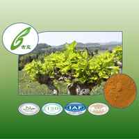100% natural Mulberry leaves extract to provide external treatment of plant extracts