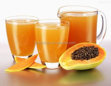 Carica papaya Extract/Carica papaya Extract powder/papaya seeds