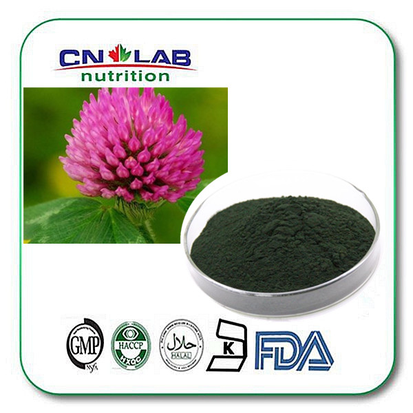 Natural and best quality red clover extract powder with competitive price