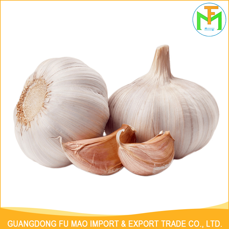Shandong High Quality Healthy 5.5Cm 6.0Cm Organic Fresh Big Size Normal White Garlic Made In China
