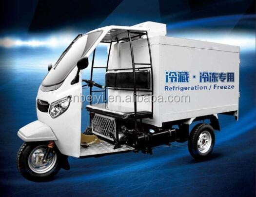 Popular 3 wheel cargo tricycle used pedicabs for sale with Dumper