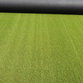 High Quality Natural Looking Grass Roll for Landscaping