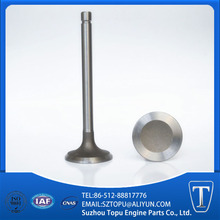 inlet and outlet engine valve for VG75