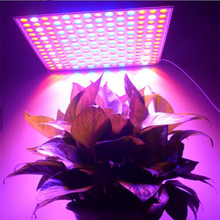 Indoor Greenhouse Square 45w led grow light for plant grow