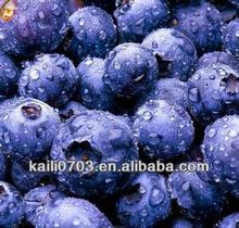 good price of IQF Frozen blueberry for sale in dandong, also good quality frozen blueberry