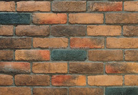 Cheap price clay Wall brick China factory supplier decorative wall tile clay brick in high quality