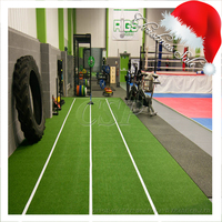 Natural cheapest landscaping gym fitness carpet,gym artificial grass