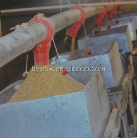 Automatic Chicken Farming Equipment