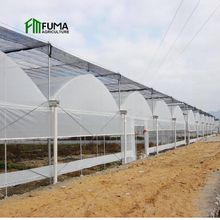 Hot galvanized steel frame Easily Installed Cheap fastening used smart automatic control film greenhouse for sale